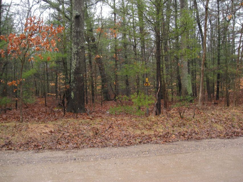 Land for Sale at Strand Strand Muskegon, Michigan 49445 United States