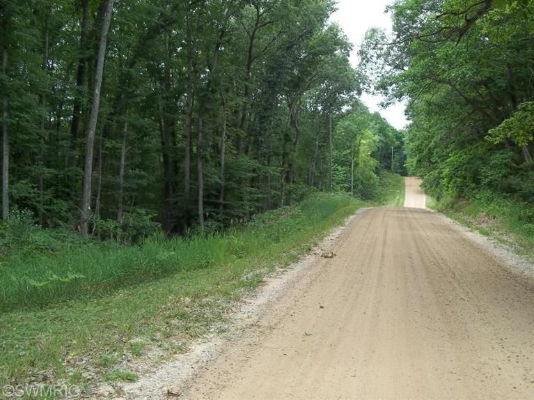 Land for Sale at Decker Fountain, Michigan 49410 United States