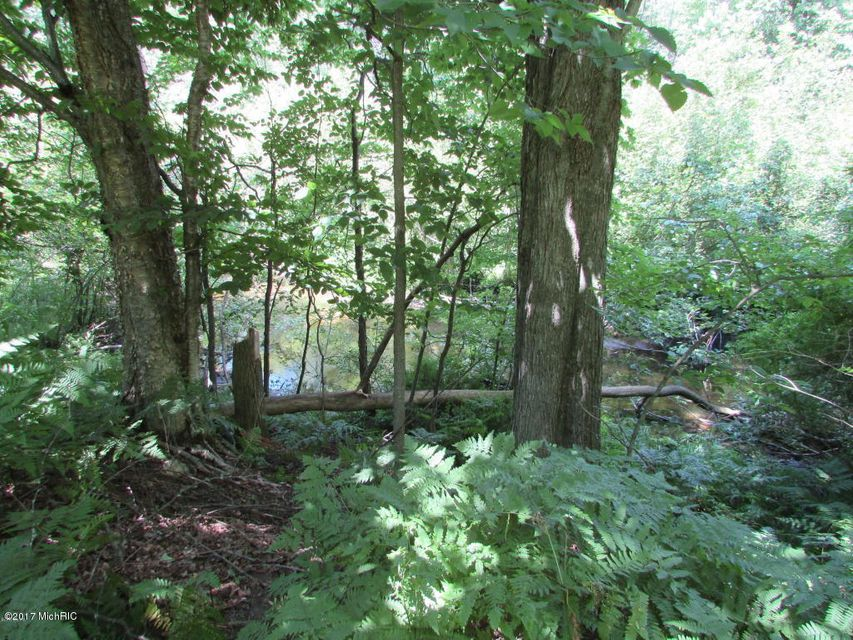 Land for Sale at 3326 Manales 3326 Manales Fountain, Michigan 49410 United States