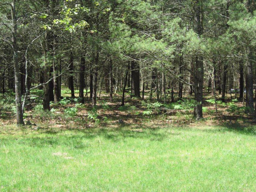 9778 Dalson Road, Holton, MI, 49425 - SOLD LISTING, MLS # 17026022 ...