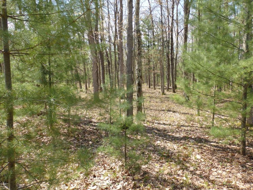 Land for Sale at Wildwood Parcel B Wildwood Parcel B Manistee, Michigan 49660 United States