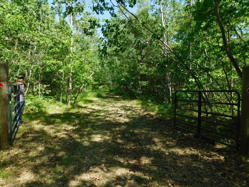 Land for Sale at Harris Road Harris Road Wellston, Michigan 49689 United States