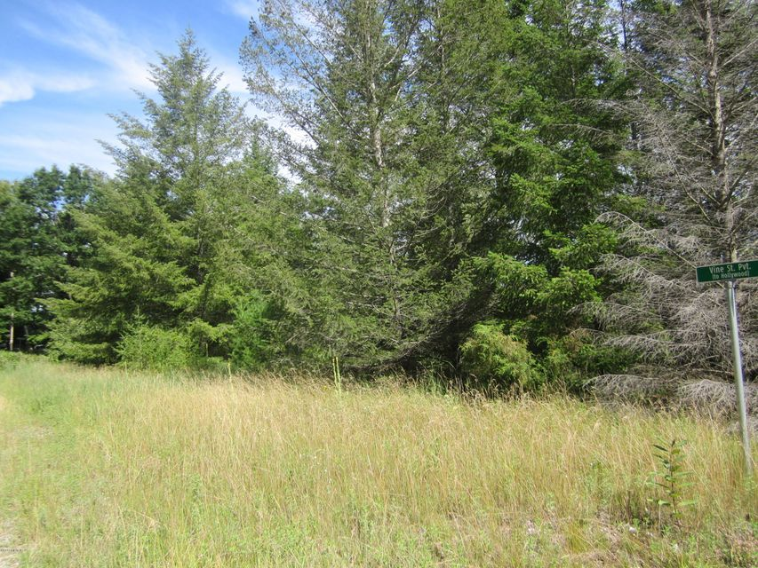 Land for Sale at Old Freesoil Manistee, Michigan 49660 United States