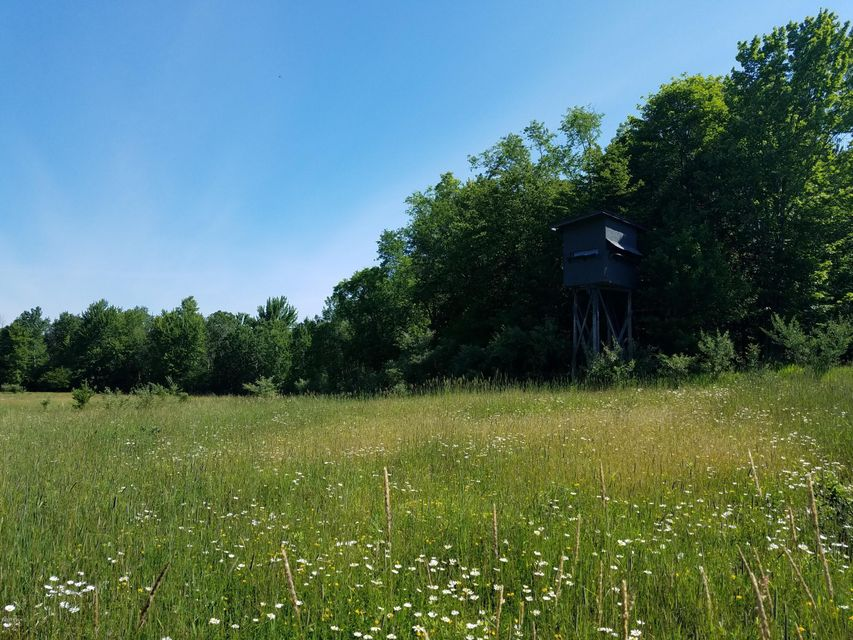 Land for Sale at Ordway Ordway Free Soil, Michigan 49411 United States