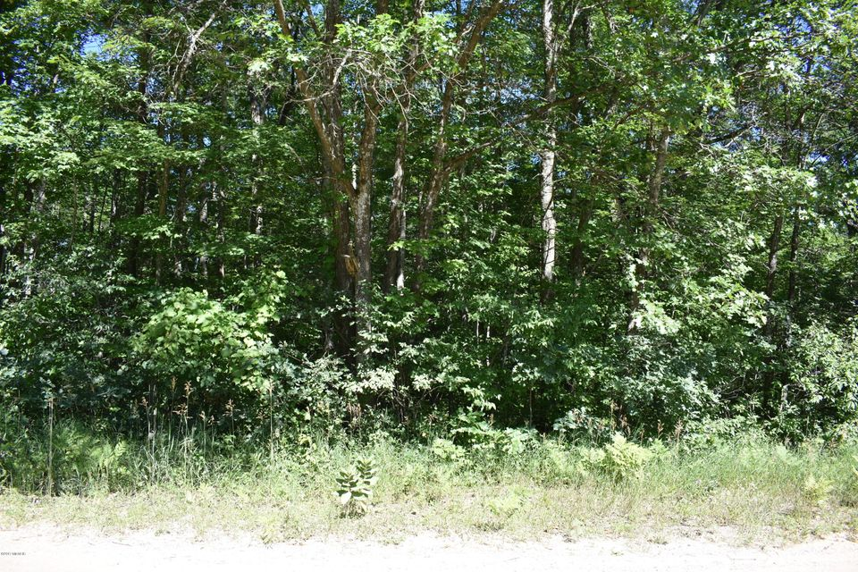 Land for Sale at Clements Clements Brethren, Michigan 49619 United States