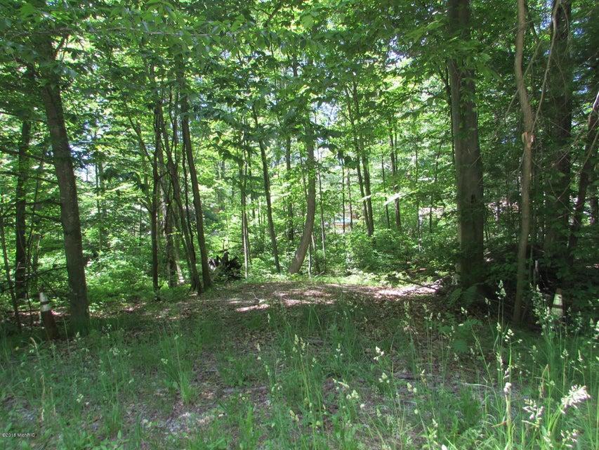 土地,用地 为 销售 在 Judson Judson 斯普林莱克, 密歇根州 49456 美国