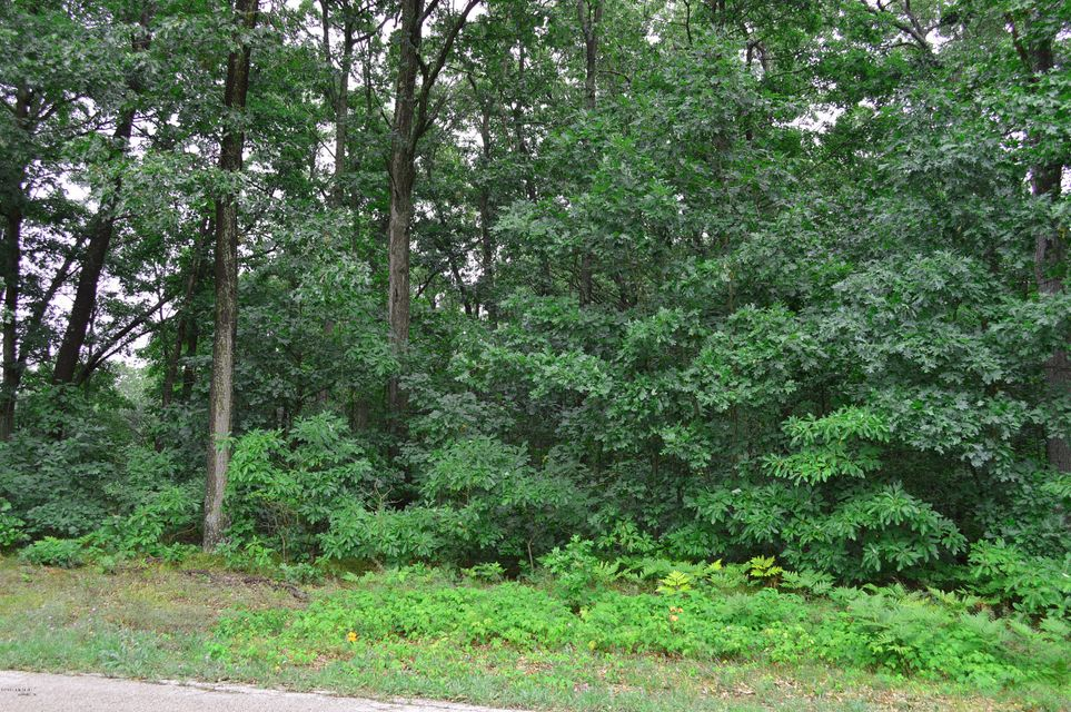 Land for Sale at 1730 Macie 1730 Macie Muskegon, Michigan 49445 United States