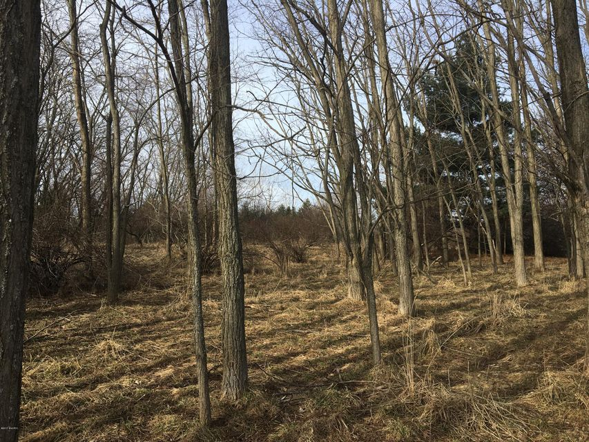 Land for Sale at Twelfth Twelfth Manistee, Michigan 49660 United States