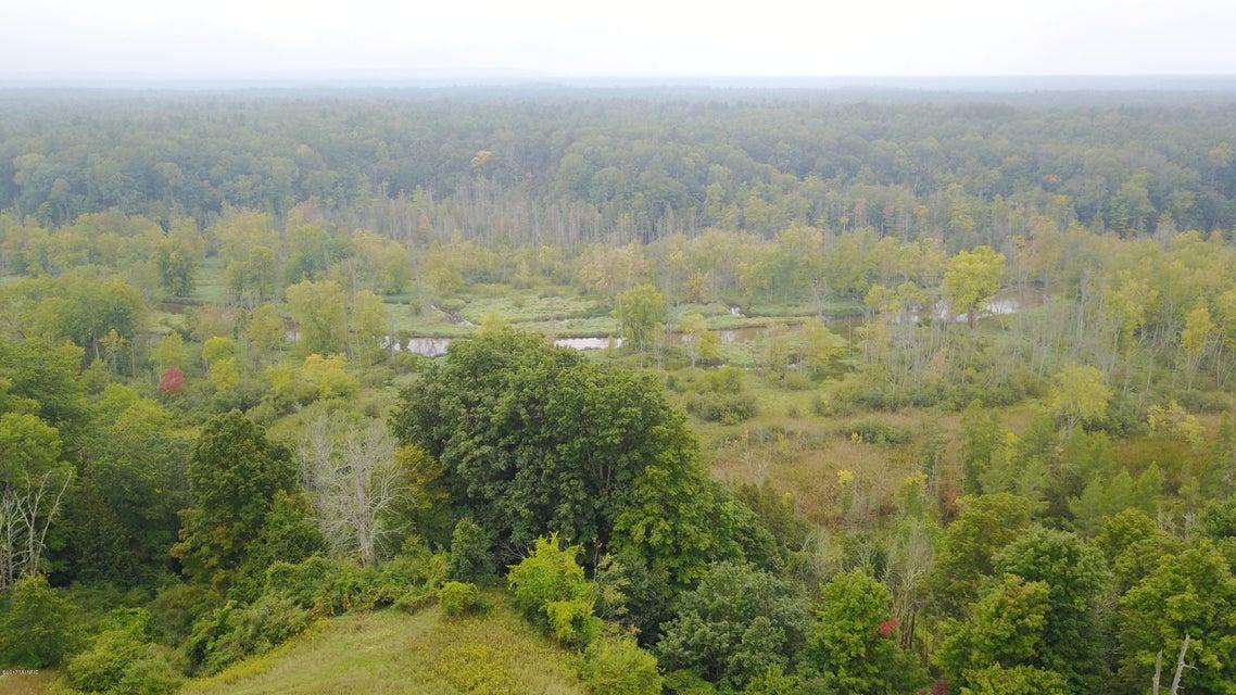Farm / Ranch / Plantation for Sale at 3675 Farnsworth 3675 Farnsworth Brethren, Michigan 49619 United States