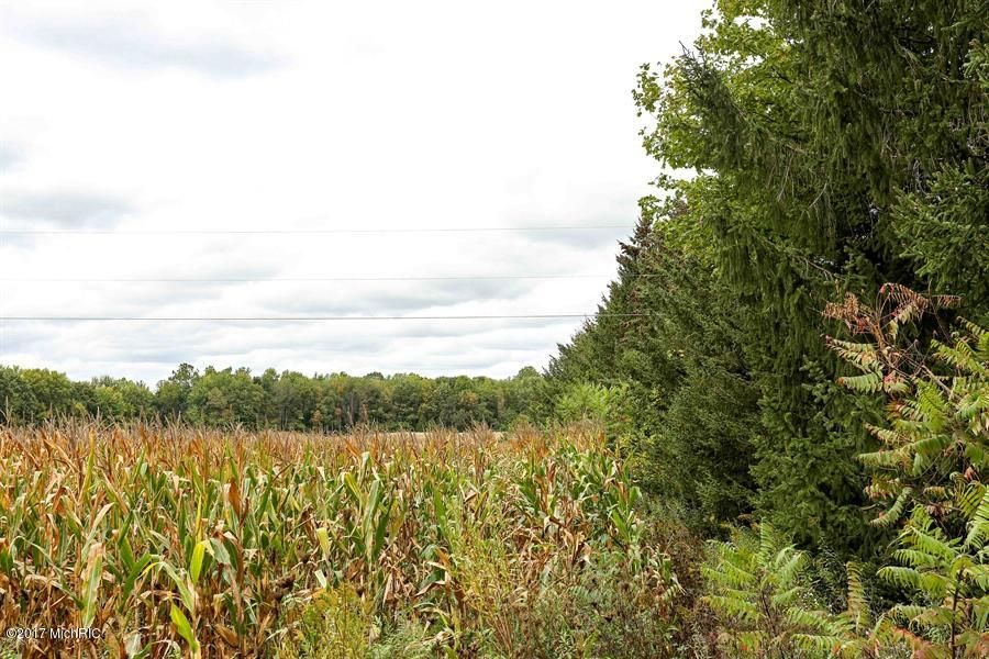 Farm / Ranch / Plantation for Sale at Snyder Snyder Berrien Springs, Michigan 49103 United States
