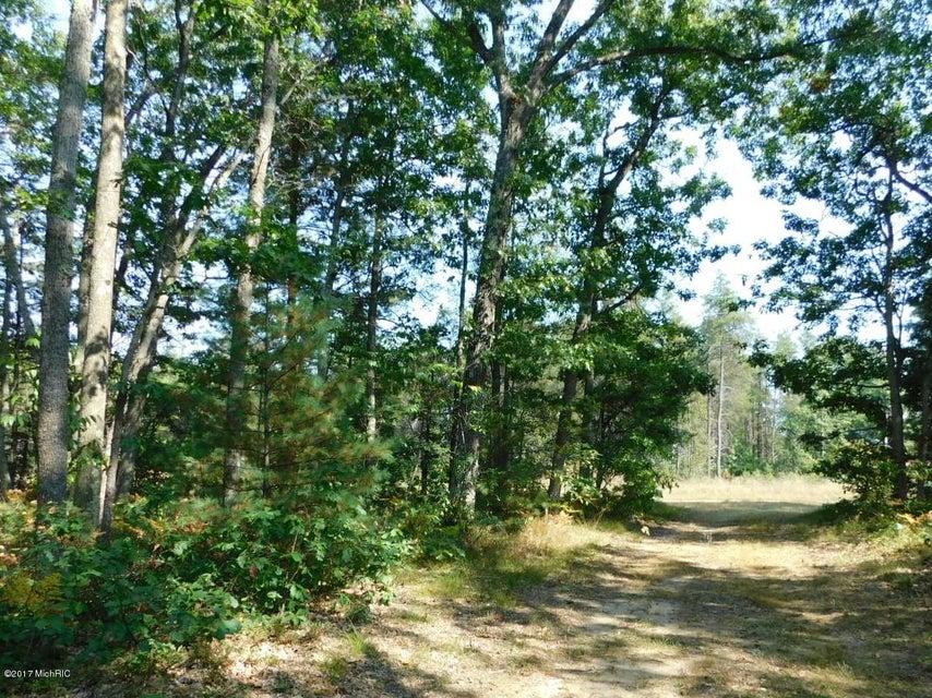 Land for Sale at 5374 Pine Creek 5374 Pine Creek Manistee, Michigan 49660 United States