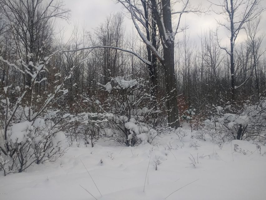Land for Sale at Stolberg Road Stolberg Road Fountain, Michigan 49410 United States