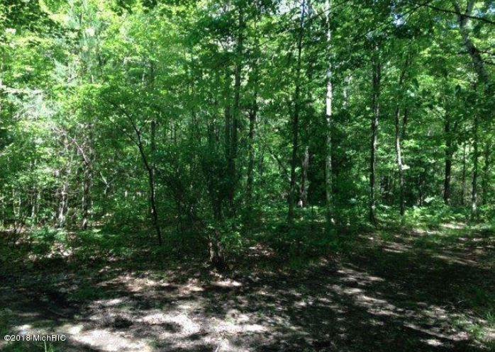 Land for Sale at North North Nunica, Michigan 49448 United States