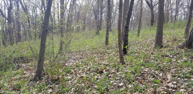40 Acres 33rd Paw Paw, MI 49079 Photo 24