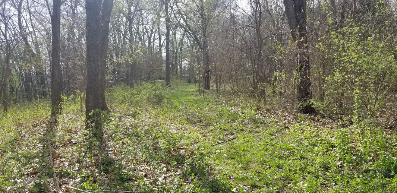 40 Acres 33rd Paw Paw, MI 49079 Photo 25
