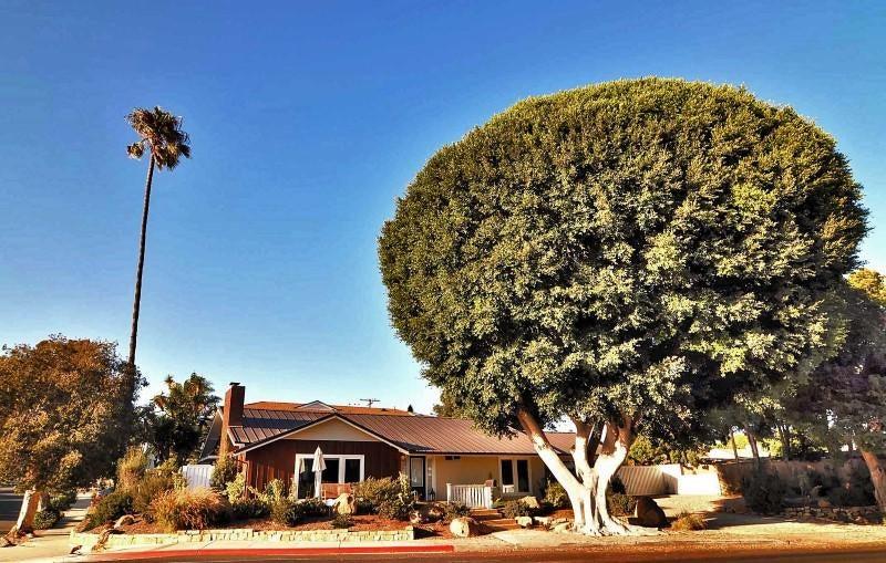 Property photo for 1548 Shoreline Dr Santa Barbara, California 93109 - RN-14240