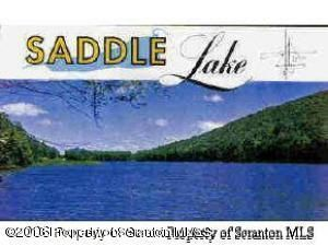 60 PARADISE LANE Tunkhannock,Pennsylvania 18657,Lot/land,PARADISE LANE,14-580
