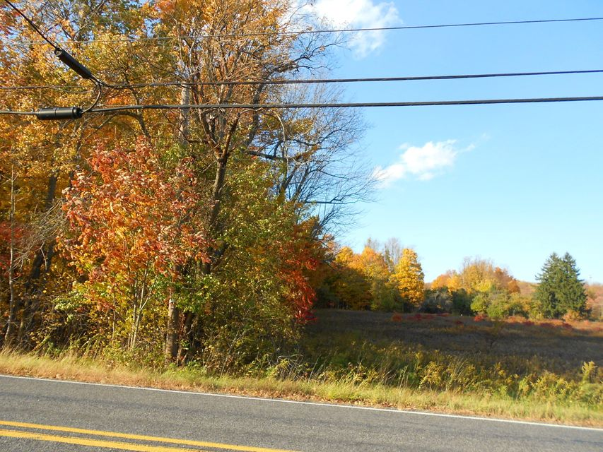 State Route 690 Lot 2 Spring Brook Twp,Pennsylvania 18444,Lot/land,State Route 690 Lot 2,17-1065