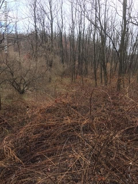Graham St,Scranton,Pennsylvania 18504,Lot/land,Graham,17-53