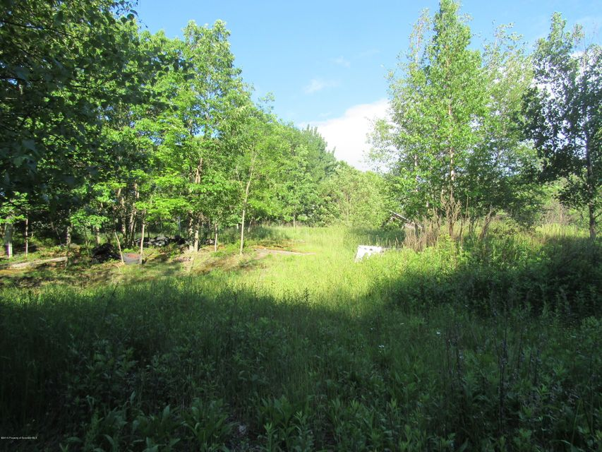 community Drive,Ransom,Pennsylvania 18653,Lot/land,community,17-635