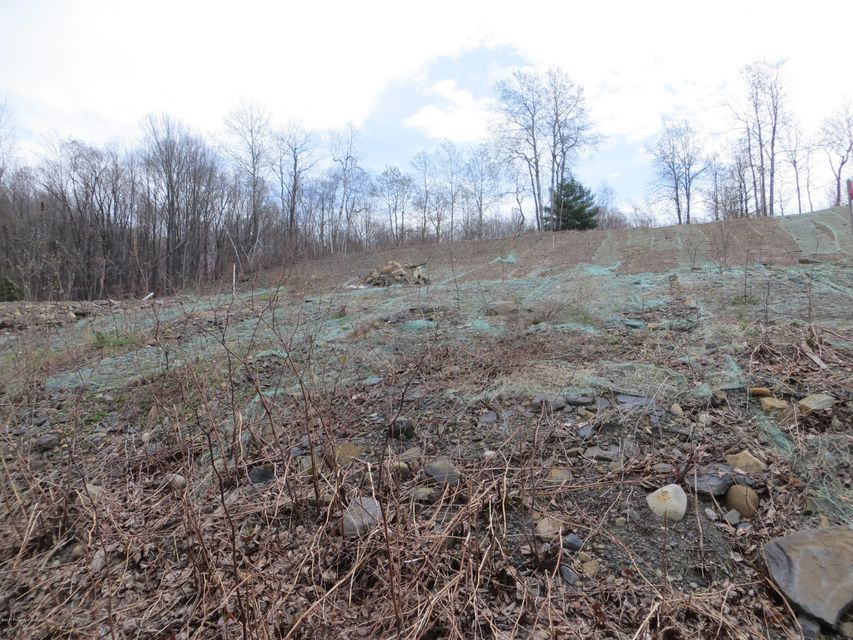 Upper Powderly St,Carbondale Twp,Pennsylvania 18407,Lot/land,Upper Powderly,17-1037
