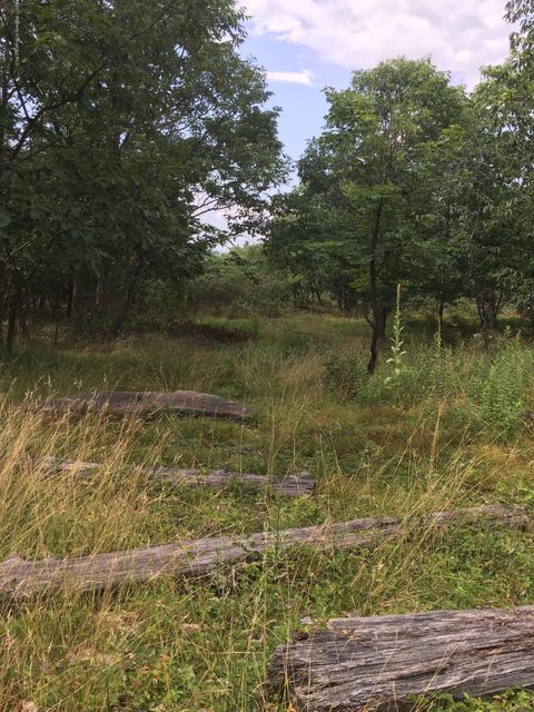 Mt Rd,Scranton,Pennsylvania 18505,Lot/land,Mt,17-3548