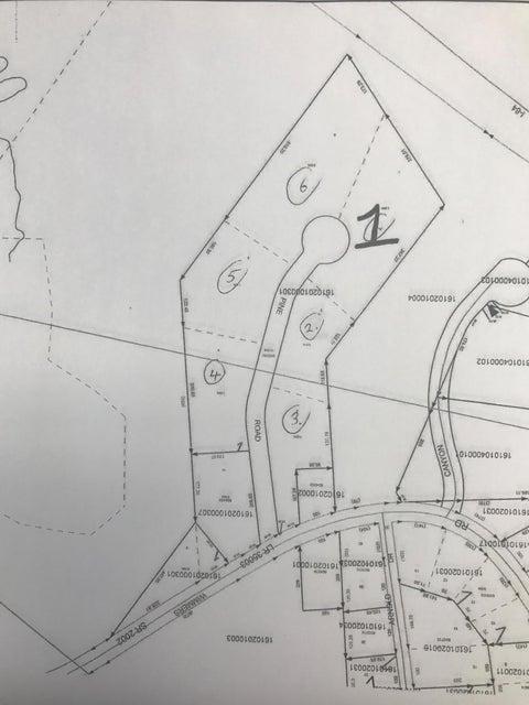 1 Pine Rd,Mt. Cobb,Pennsylvania 18436,Lot/land,Pine,17-3899