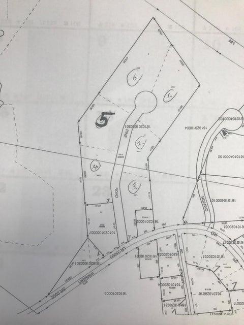 5 Pine Rd,Mt. Cobb,Pennsylvania 18436,Lot/land,Pine,17-3903