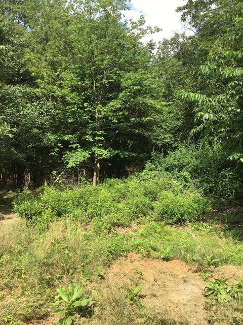 Mountain Rd,Scranton,Pennsylvania 18505,Lot/land,Mountain,18-1214