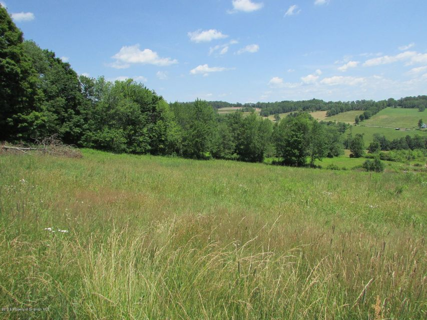Fields & views