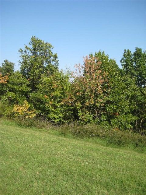137  Forest Oak Drive #46 Hollister, MO 65616