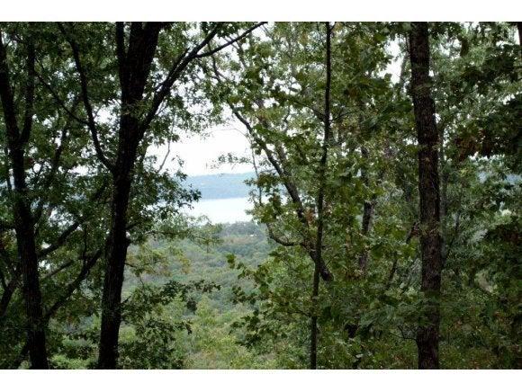 Plateau Lane Kimberling City, MO 65686