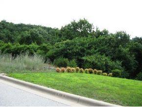 Summerwood Drive Branson, MO 65616