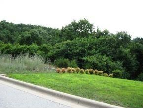 Lot 11 Cottonwood Branson Mo 65616