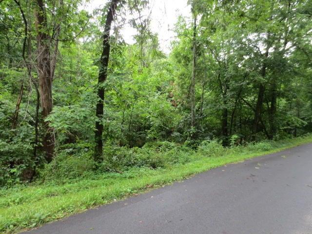 Peck Hollow Road Rogersville, MO 65742