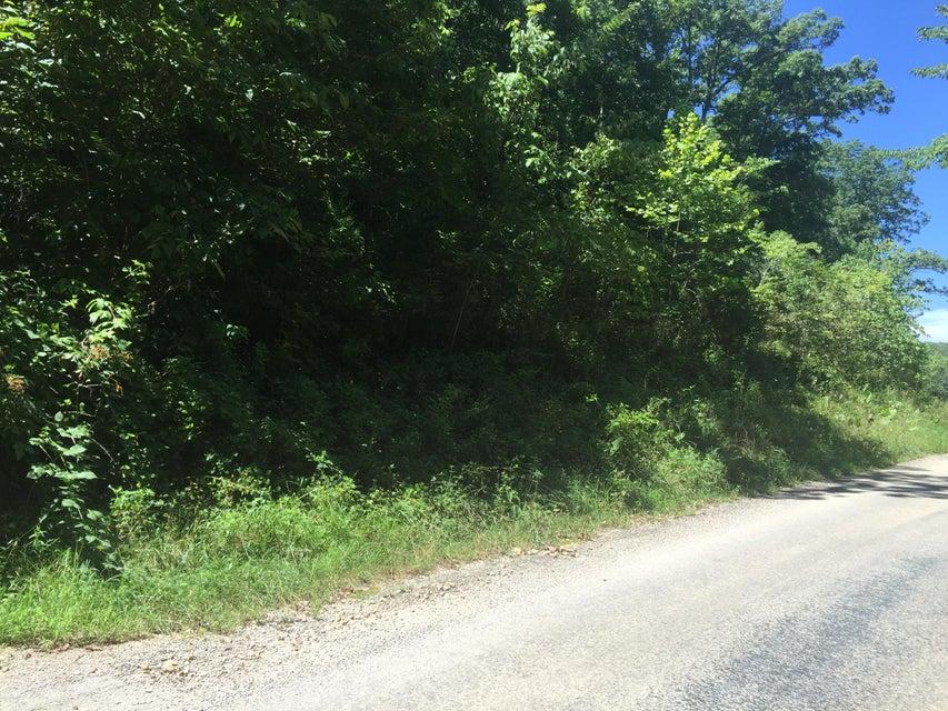 Peck Road Rogersville, MO 65742