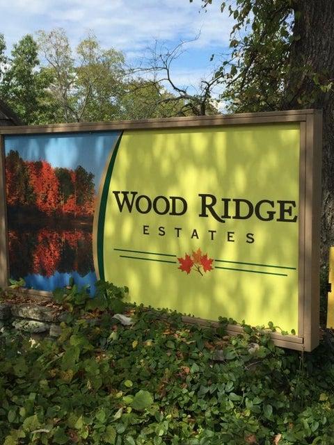 Wood Ridge Drive Blue Eye, MO 65611