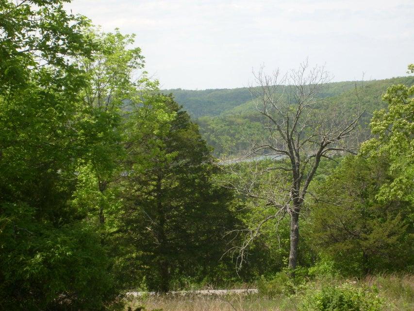 Cow Creek Road Blue Eye, MO 65611