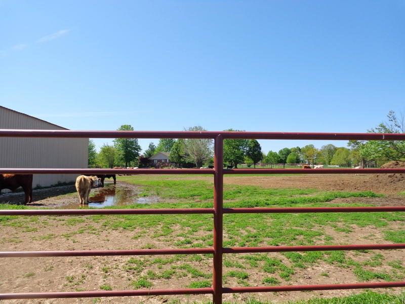 10811 Farm Road 188