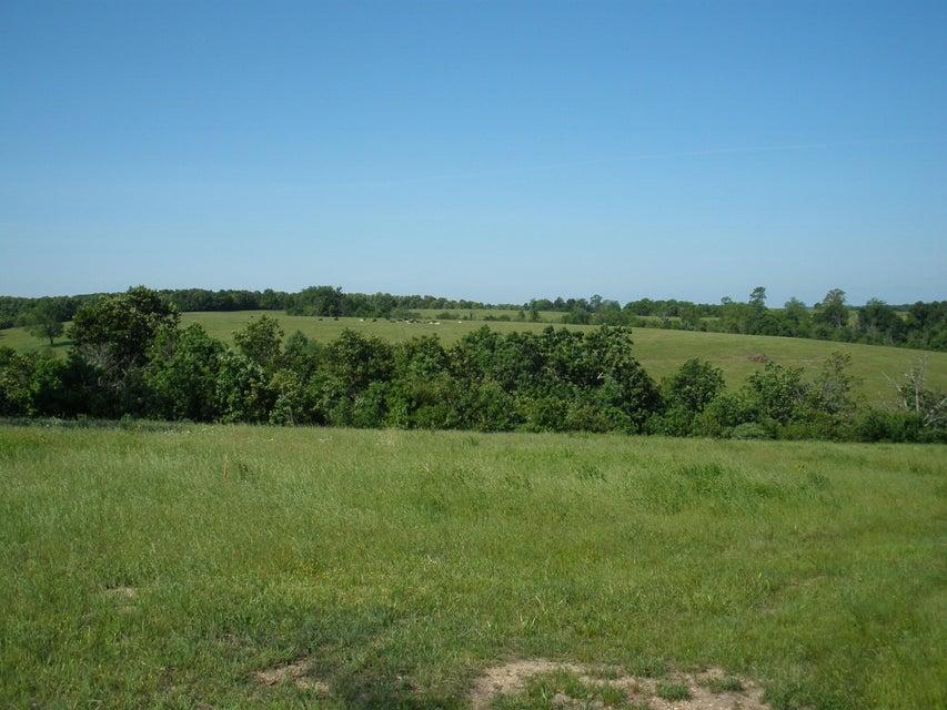 14238 Farm Road 2110