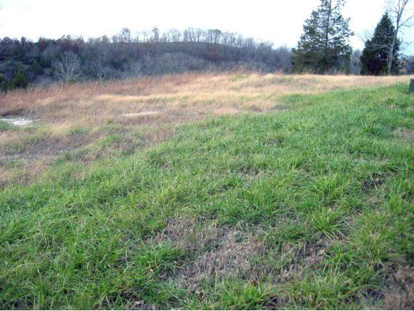 Lot 184 Forest Lane, Branson West, MO 65737