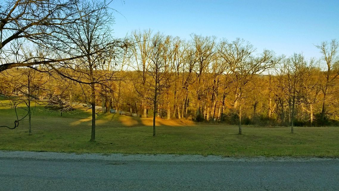 221  Jacks Hollow Road #lot 74 Walnut Shade, MO 65771