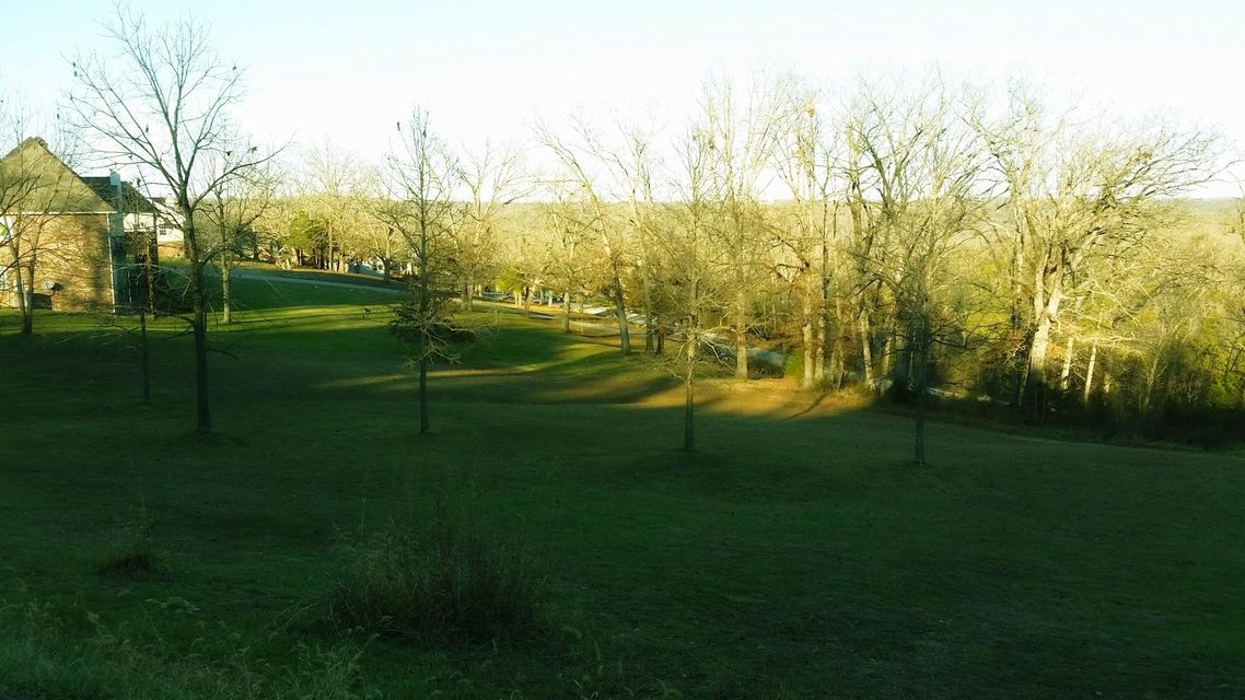 211  Jacks Hollow Road #lot 75 Walnut Shade, MO 65771