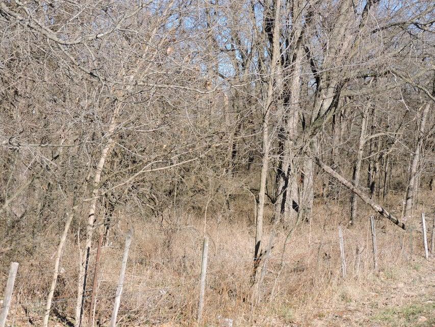 Farm Road 159 #East Tract Springfield, MO 65803