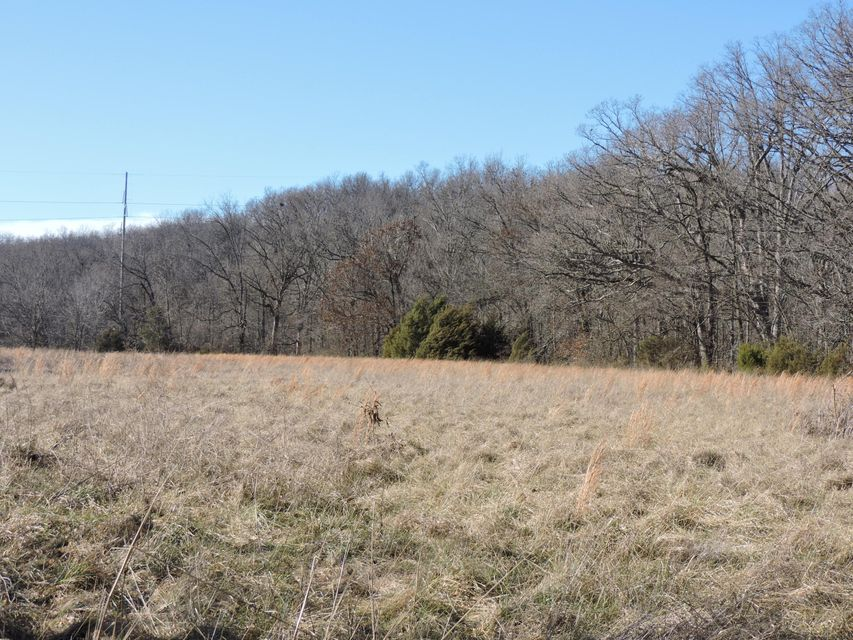 North Farm Road 159 #West Tract Springfield, MO 65803