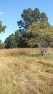 710  Birdsong Marshfield, MO 65706