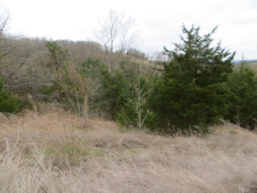 Hummingbird Hills Lane Branson, MO 65616