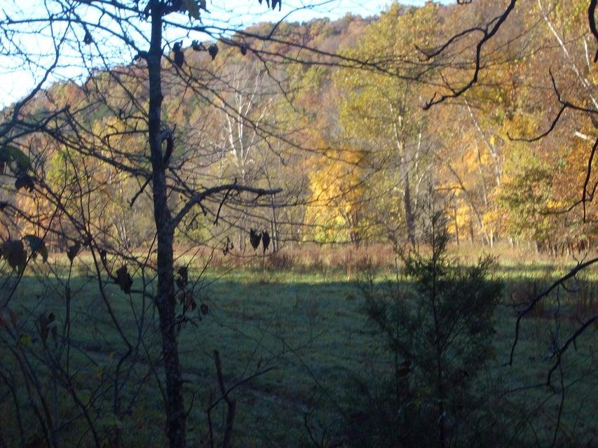 Hwy 65 & Woods Fork Highlandville, MO 65669