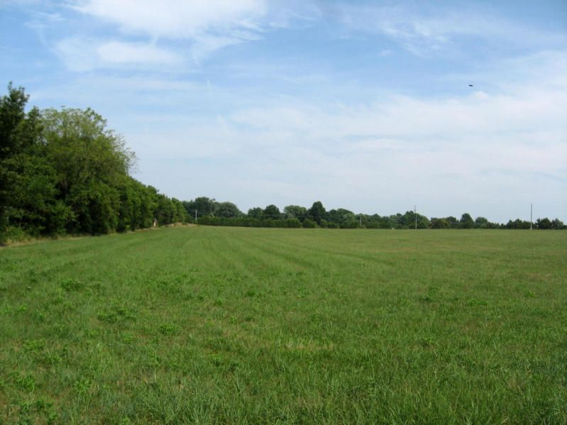 4193 South Zion Lane #Tract # 2 Rogersville, MO 65742