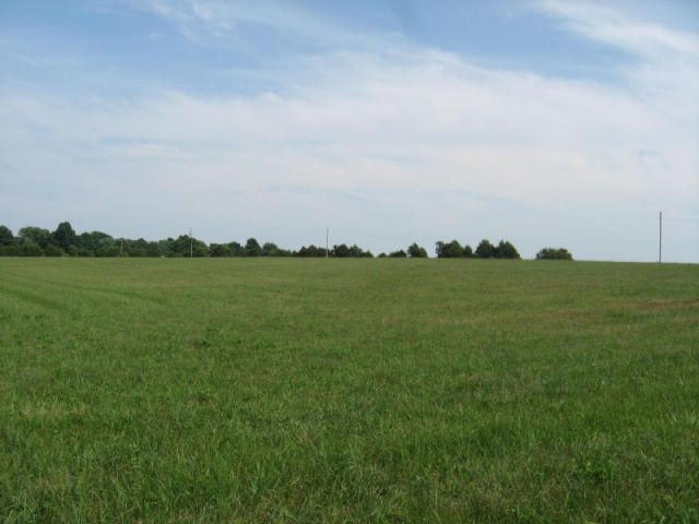 4193 South Zion Lane #Tract # 5 Rogersville, MO 65742